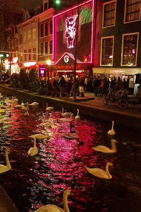 Amsterdam jl - site internet 010.jpg