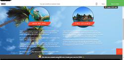 Wix Website Editor (1)