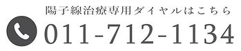 札幌がん治療_陽子線治療専門サイト (2).png