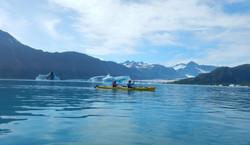 Kenai Fjords (Alaska)