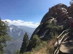Sequoia (California)