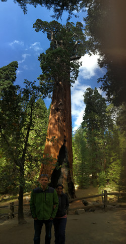 Kings Canyon (California)