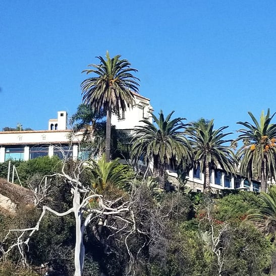 Palm trees partially obscure a massive home on a hill in Malibu, California