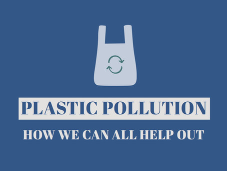 Plastic Pollution - How We Can All Help Out
