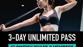 BASE 3 DAY UNLIMITED PASS (Glowfish Phase 2 members)
