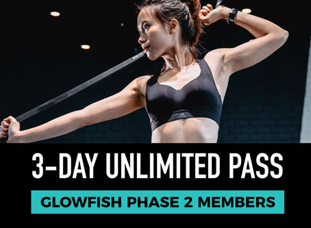 BASE 3 DAY UNLIMITED PASS (Glowfish Phase 2 members)