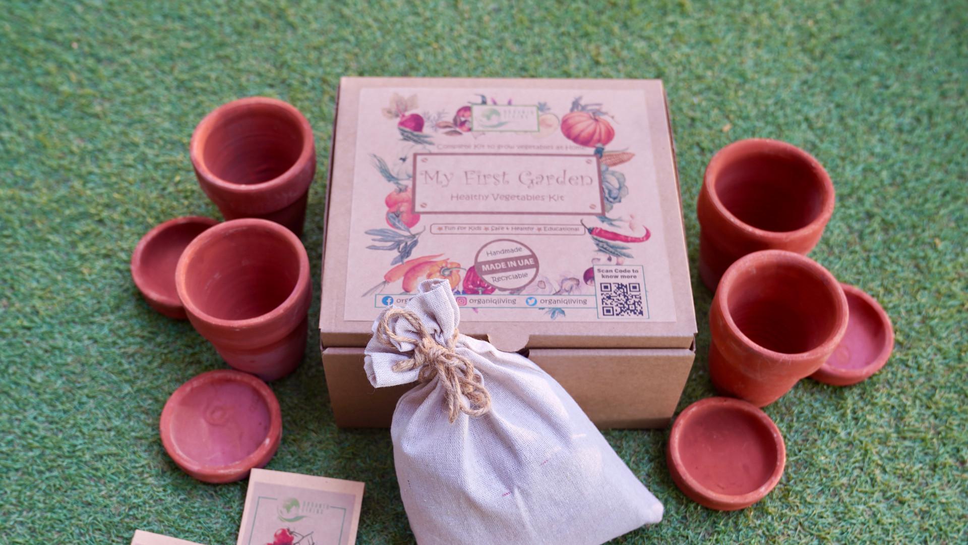 DIY Gardening Kit_Healthy Vegetables.JPG