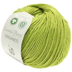 organico-uni-lana-grossa-14940091_K.JPG
