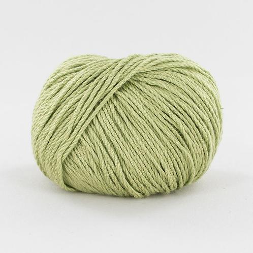 Bambou - vert