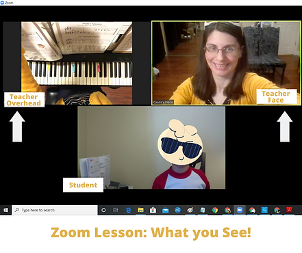 Zoom Lesson - What you See.png