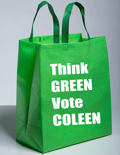 think green vote coleen bag.jpg