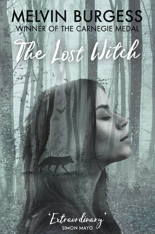 Lost Witch       by Melvin Burgess