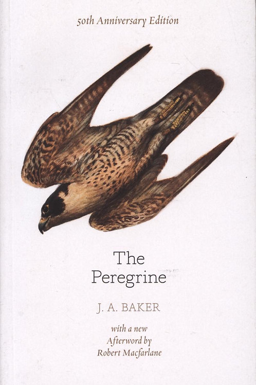 Peregrine: 50th Anniversary Edition       by J. A. Baker