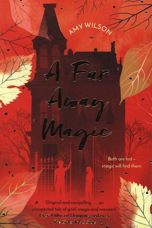 A Far Away Magic Amy Wilson