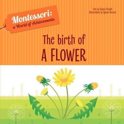 The Birth of a Flower Chiara Piroddi