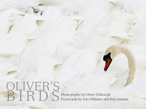 Oliver's Birds     by  Oliver Hellowell