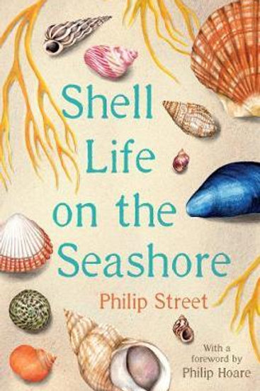 Shell Life on the Seashore Philip Street