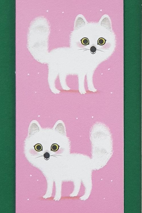 Artic Fox        KGBM339