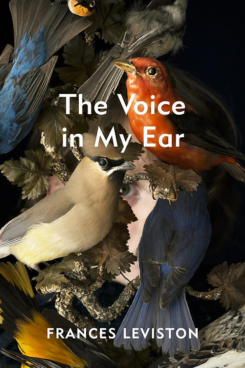 Voice in My Ear       by Frances Leviston