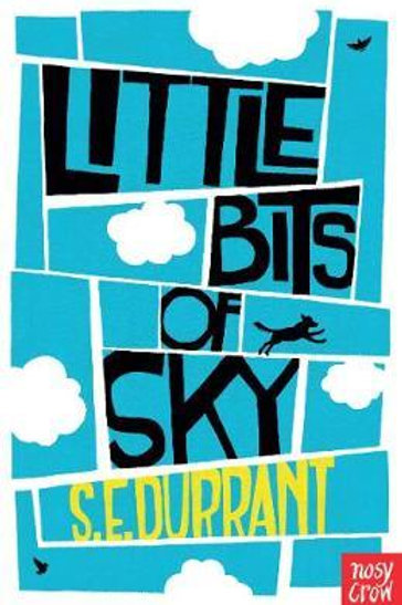 Little Bits of Sky S. E. Durrant