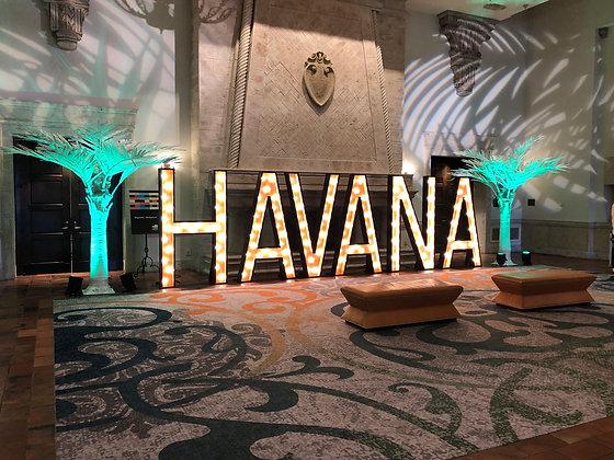 Havana Letters