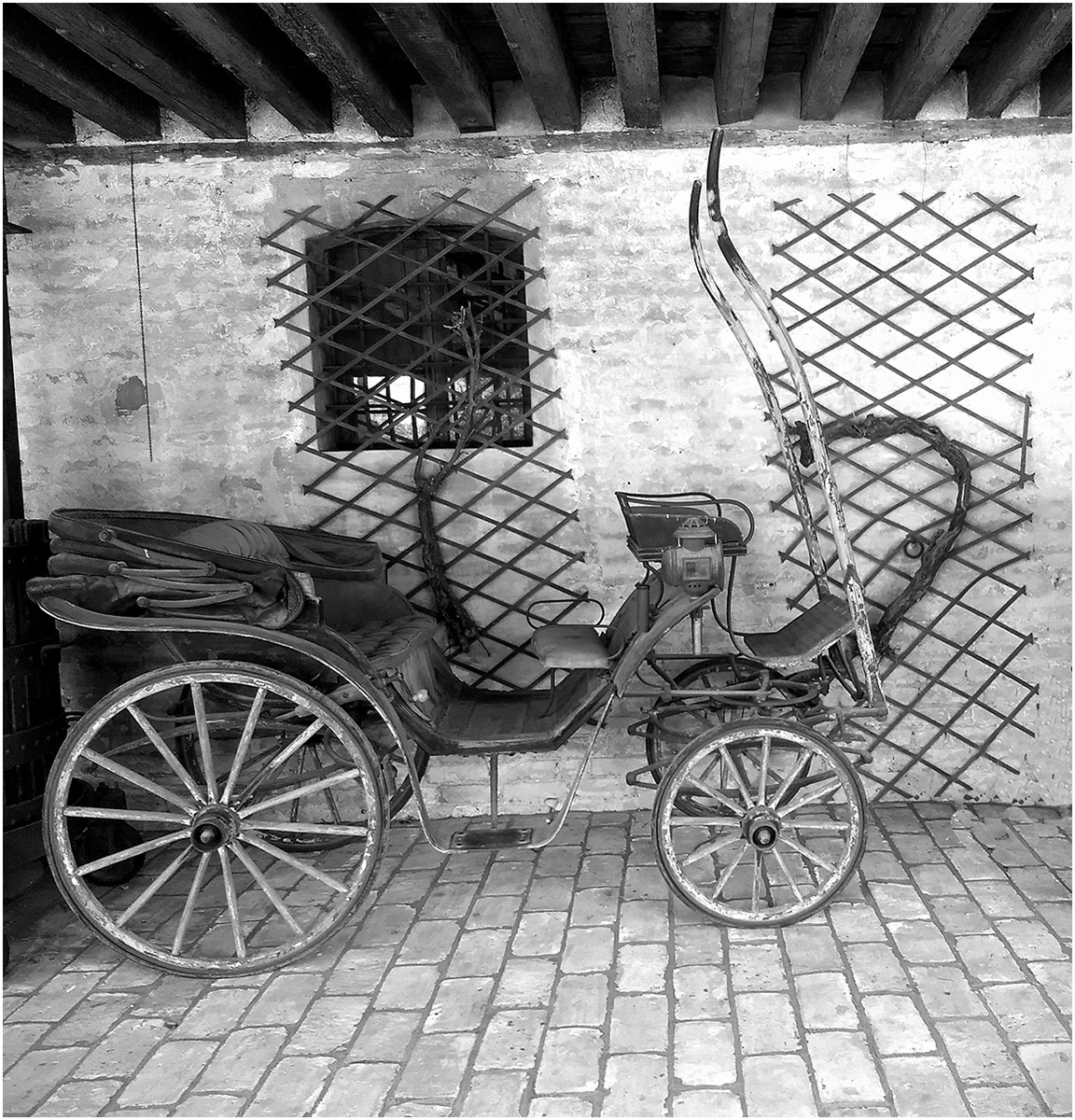 MONO - A Horseless Carriage by Pat Seenan ( 6 marks)
