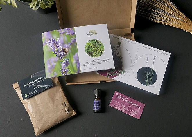 Ma Box d'Herboriste 3.jpg