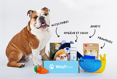 Woufbox-elements-box.jpg