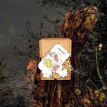 Permabox c'est la box de jardinage bio spéciale permaculture.