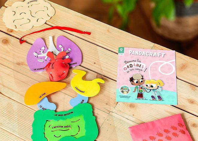 Pandacraft organes.jpeg