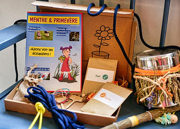 Menthe et Primevere 7.jpeg