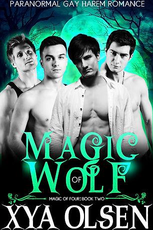Magic of Wolf.jpg