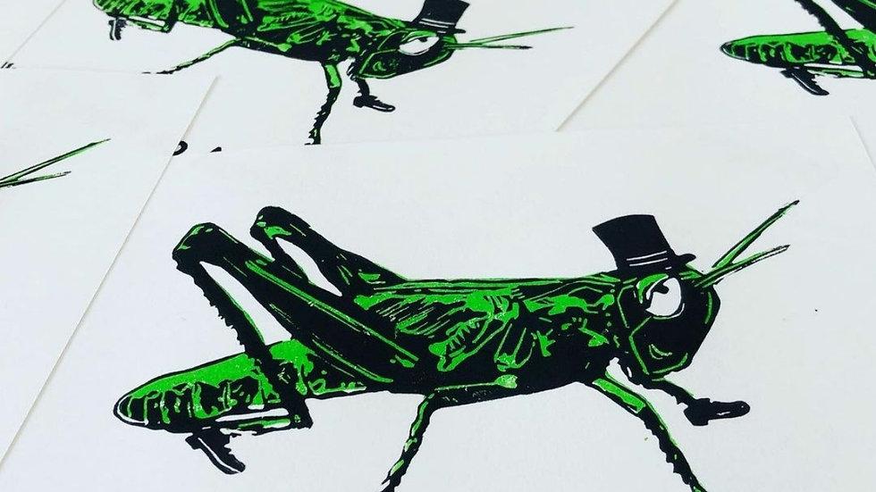 Playful Grasshopper