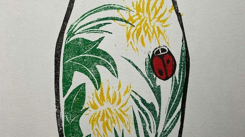 Ladybirds & Dandelions