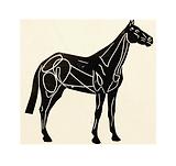 horseroz.png