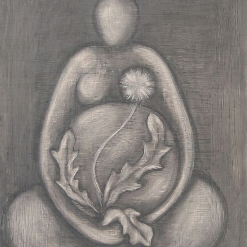 Pregnancy and Birth Options: A Workshop to Support the Birthing Journey