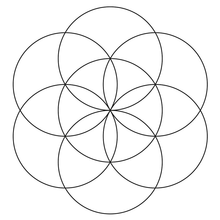 Yoni (Vagina) Steaming Circle