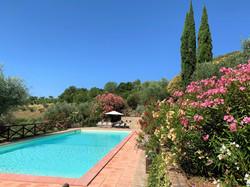 Pool & oleander