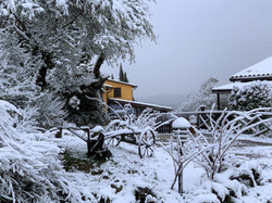 Winter beauty at San Felicissimo