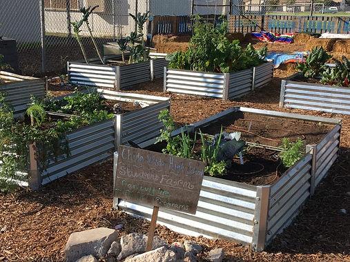 CVHS-garden-boxes-1024x768.jpg