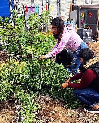 CVHS.jardin.4.24.18_edited.jpg