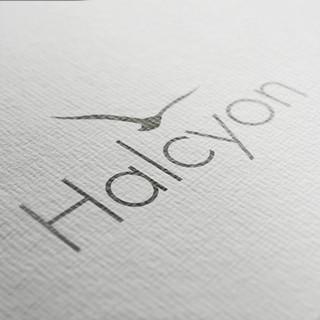 Halcyon Logo Branding