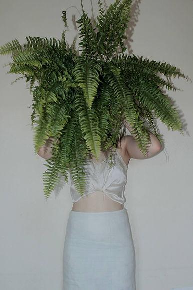 plant self.jpg