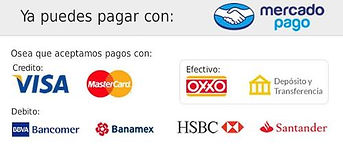 MercadoPago2_1024x1024.jpg_v=1524165438.