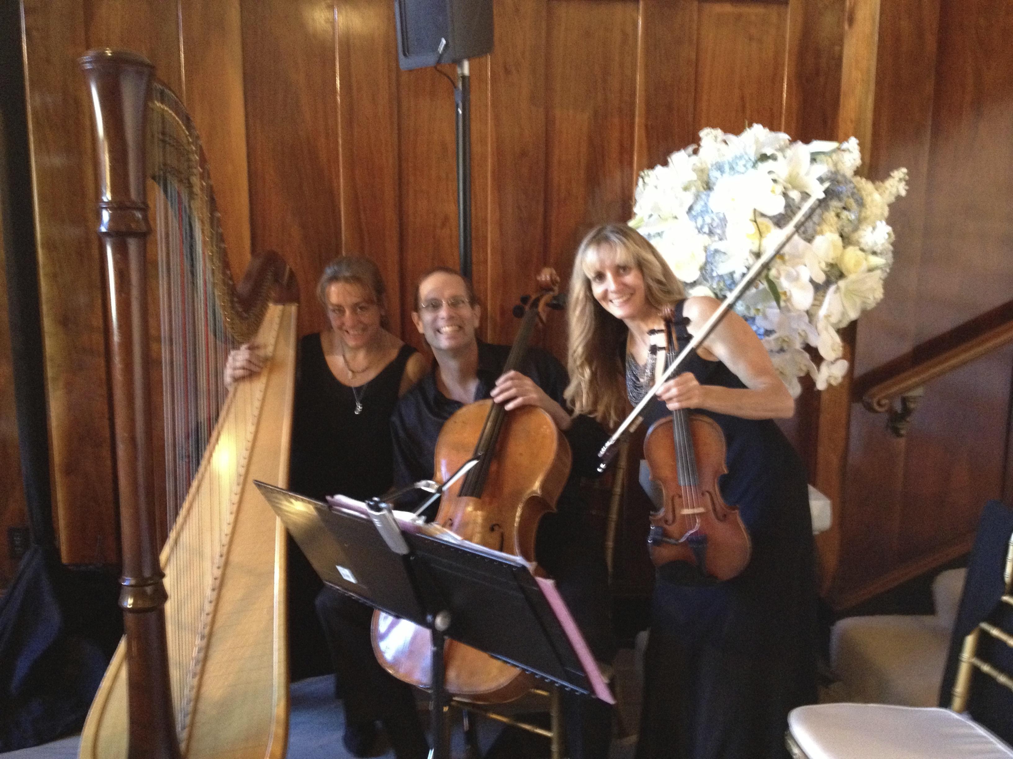 Harp, Violin, Cello Trio