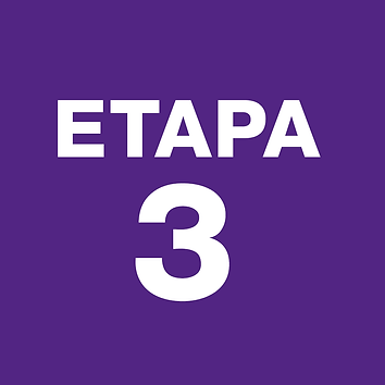 ETAPA3.png