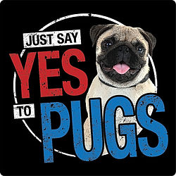 Yes Pugs.jpg