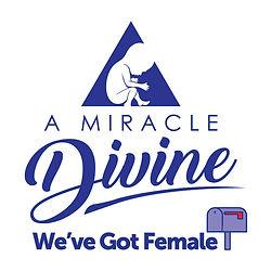We've Got Female.jpg