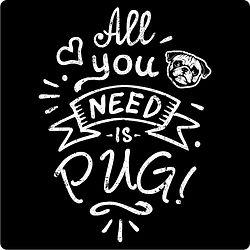 All you need is pug.jpg