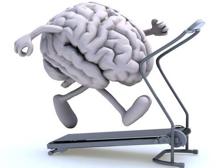 Exercise after Concussion:   Is It Okay Now?